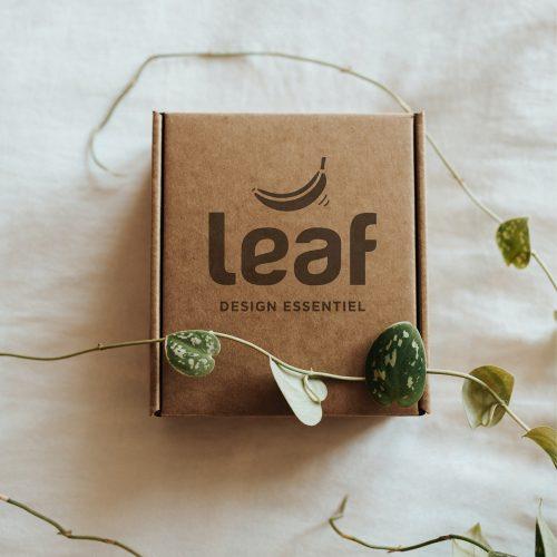 packaging-branding-agence-design